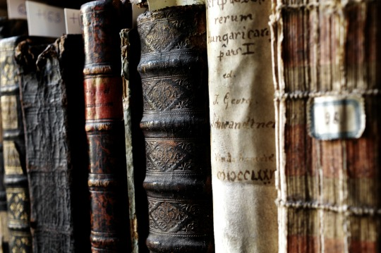 Venice-books-540w